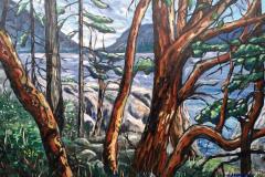 JulieJjohnston_Lighthouse-Park-Arbutus-24-X-36-oil-on-canvas
