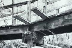 YAH2021-ArtCards-front-May