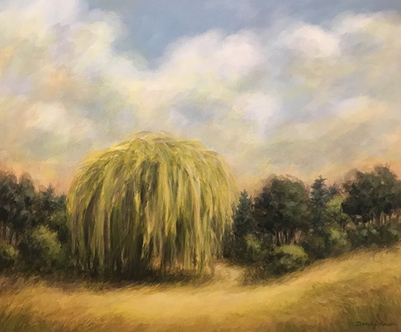 Willow in the Valley,by Dana Johnson