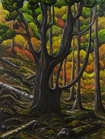 Jedediah Tree, Jedediah Island by Rhonda Honing