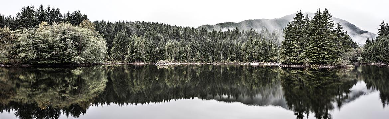 Rice Lake Panorama by Luke Potter