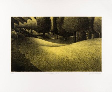 Carisbrooke Park by Ross Penhall