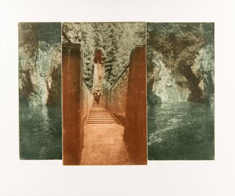 Lynn Canyon by Joan Smith