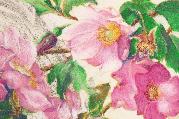 Wild Roses by Mary Blaze