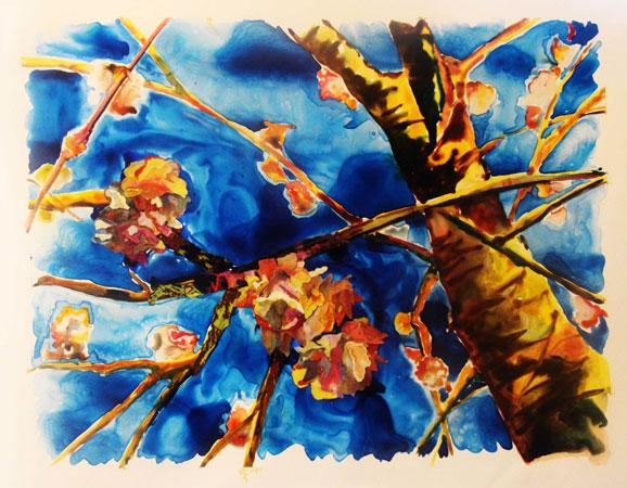 Blossom by Fariba Mahmoodian