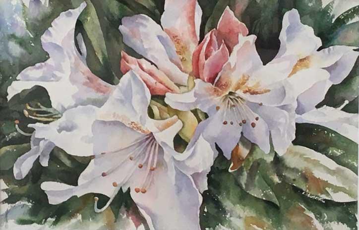 Lilium Life by Maryam Akhavan
