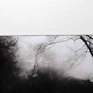 TreeScape NINE by Jocelyn Fisk-Schleger