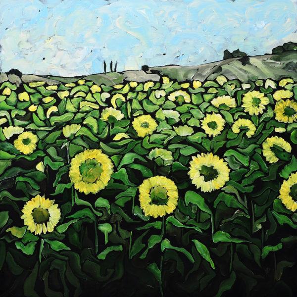 Sunflowers, Tuscany by Kim Rosin
