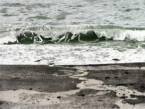 Beachcombers 10/15 by Elisabeth Sommerville