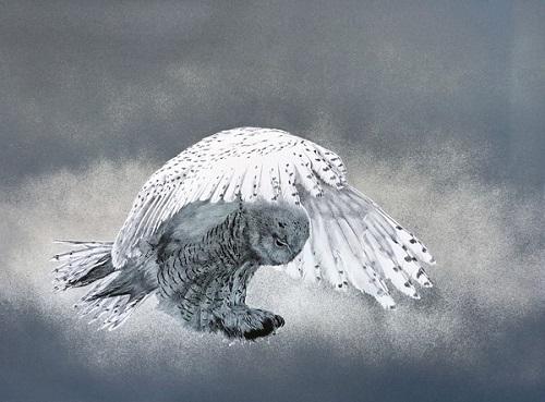 Soft Landing 3/12 by Elisabeth Sommerville
