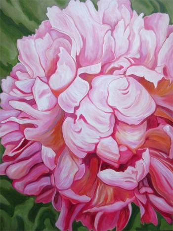 Pink Velvet by Sandra Yuen MacKay
