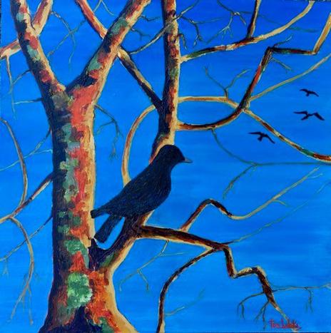 Arbutus Crow by Toni Ludski