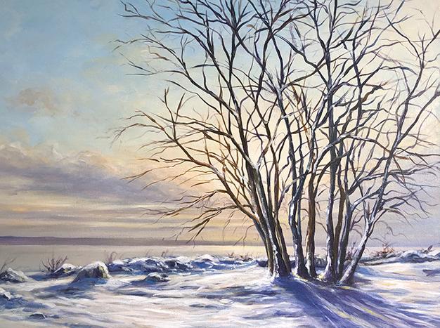 Snowy Ambleside by Danyne Johnston