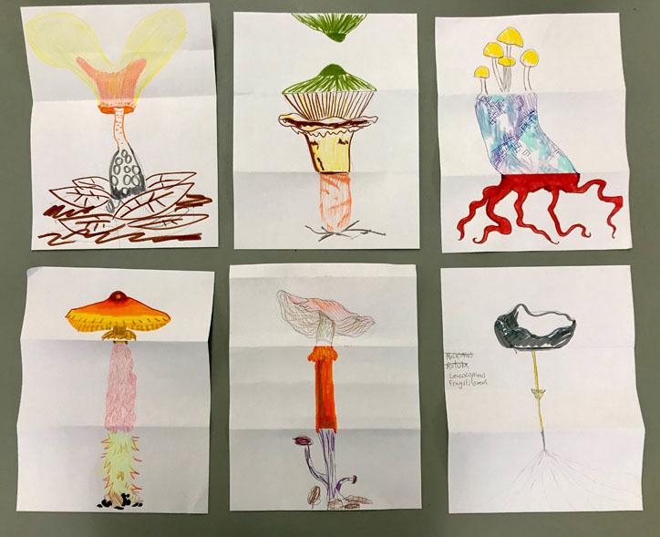 Art & Mycology